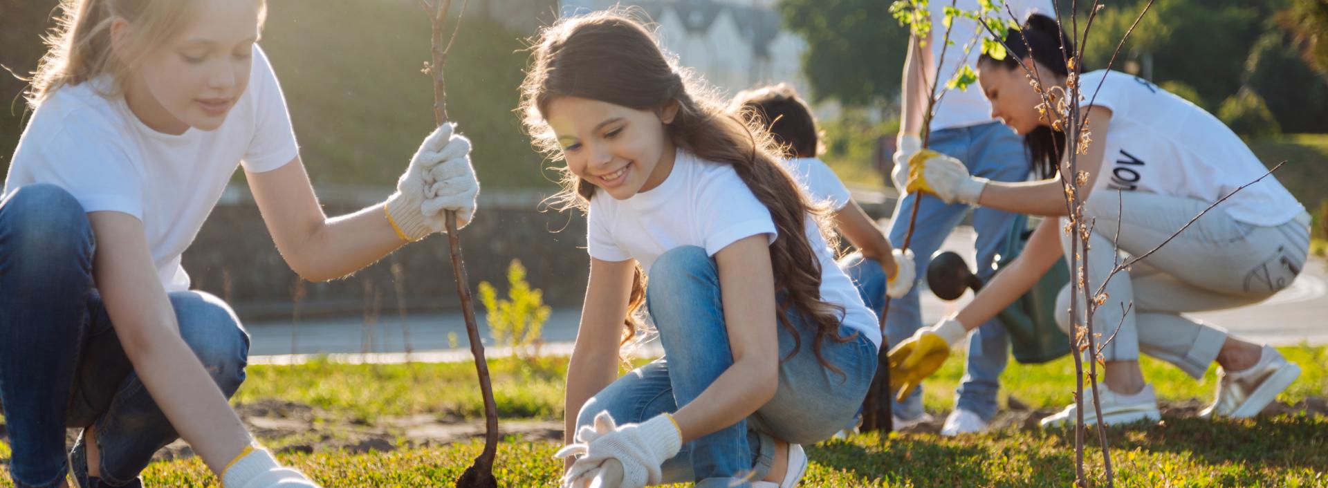 Social Skills & Service groups Header Image